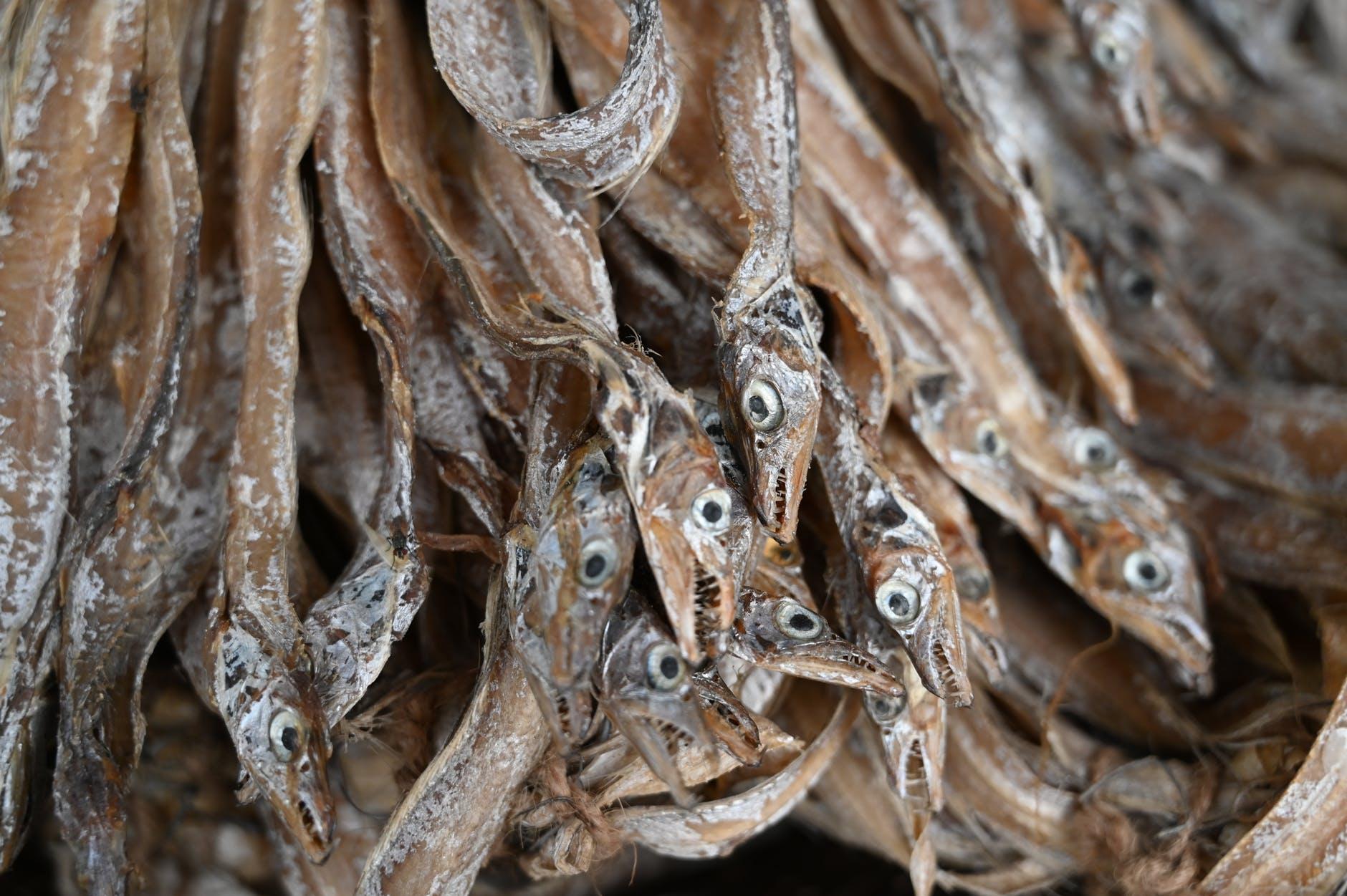 Dried whitebait