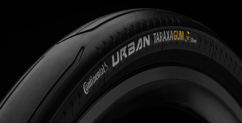 A black bicycle tyre with a dandelion logo, the first bike tyre made of dandelion rubber