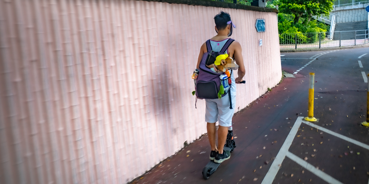 A dog takes a ride on an e-scooter on a cycle path near Sha Tin, New Territories